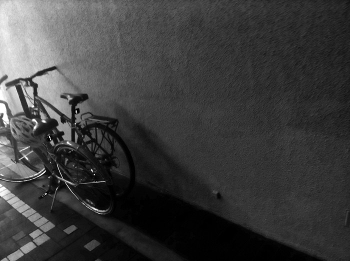 bicycles in the hallway